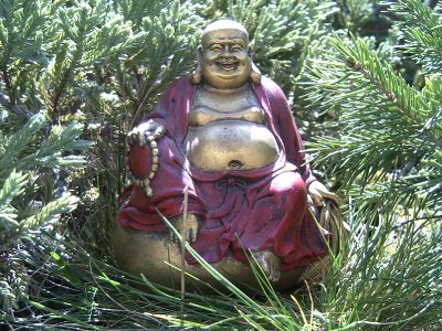 buddha_in_nature